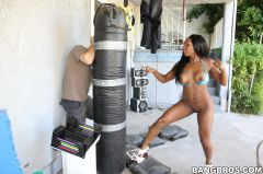 Persia - Bunny comes out to play after a workout (Thumb 144)
