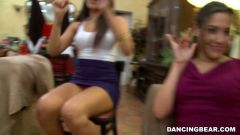 Amateurs - Remy's Dancing Bear Fiesta (Thumb 165)