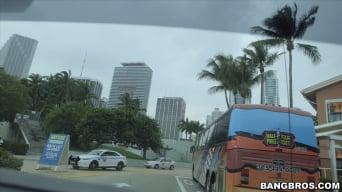 Pristine Edge in 'Miami Tours, The Bangbus way'